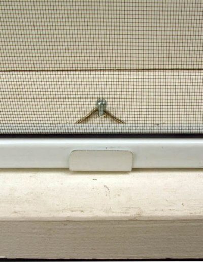 This is a close up of the bottom clip that secures the screen to the window so that it will not fall off when the screen is hit by high winds or when the house expands and contracts during the seasonal changes. Plungered screens often fall off under those conditions.